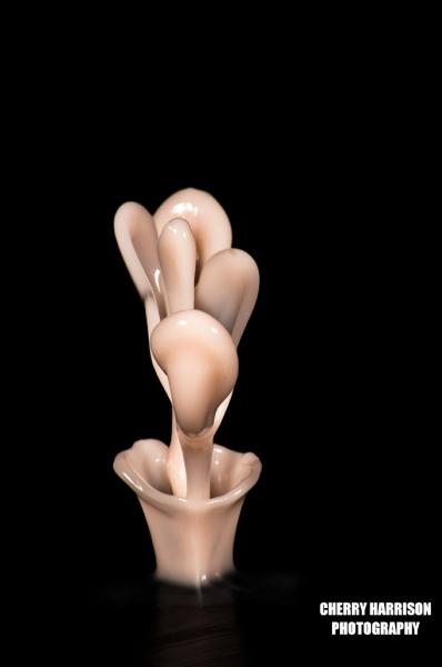 Cymatics  liquid biomorphic sculptures 2