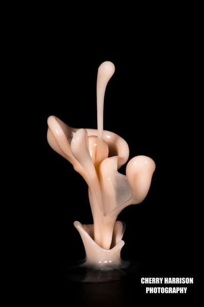 Cymatics  liquid biomorphic sculptures 3
