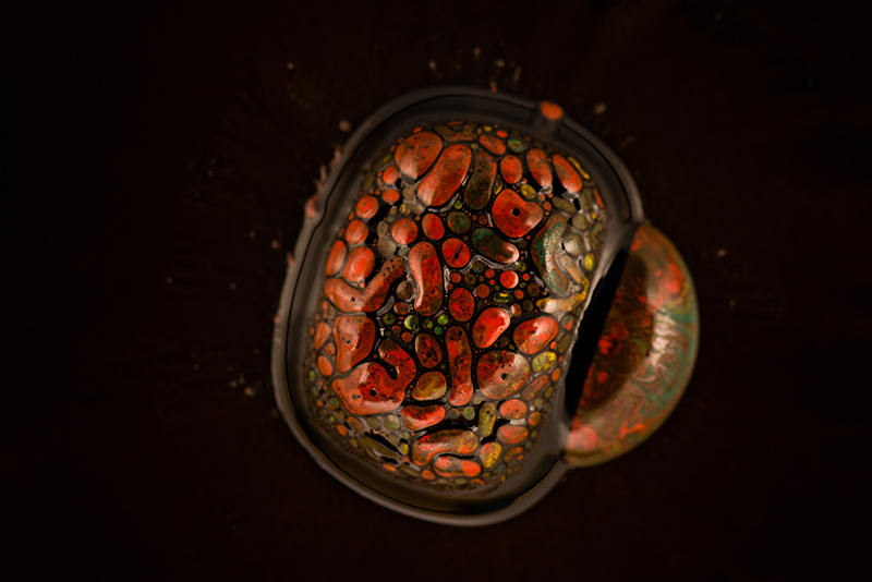 Macro Ferrofluid and paint fine art