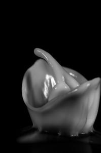 cymatics, visualise sound, cymatics photography, cymatic formations, cymatic patterns, biomorphic shapes, cymatics art, visualise sound photography, sound art, biomorphic art, sound photography, vibration, structure, speaker, macro, fine art